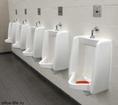 Основы этикета в офисном туалете